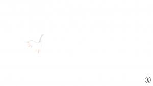 CSSSPNQL Logo_anime 1