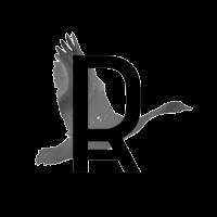 RIAPA logo 400x400 en