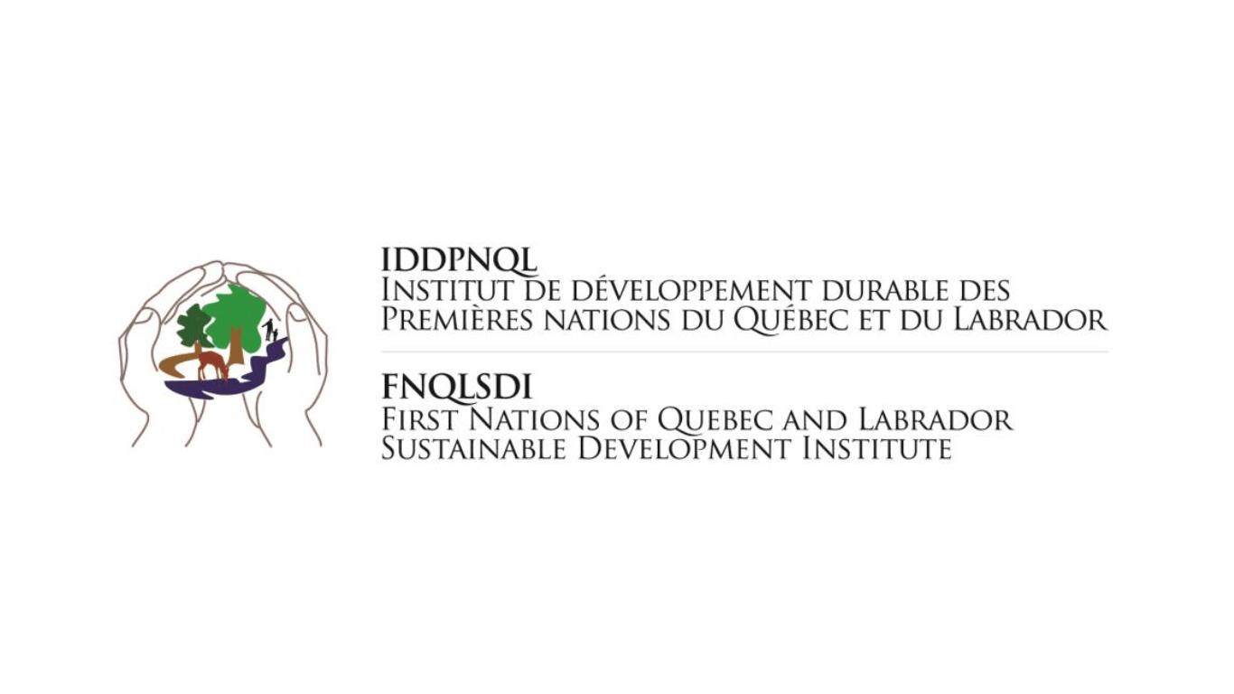 Logo IDDPNQL